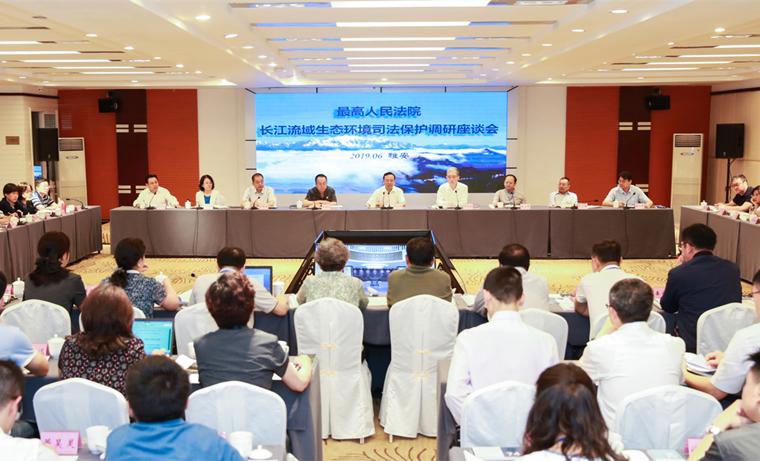 充分发挥环境资源司法服务保障作用  推进长江流域生态环境保护和长江经济带高质量发展