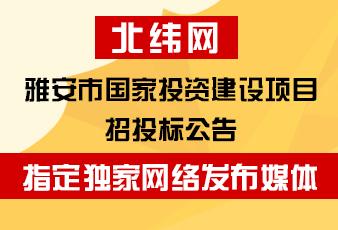 雅安市国家投资建设项目招投标公告指定独家网络发布媒体