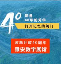 庆祝改革开放40周年雅安数字展馆