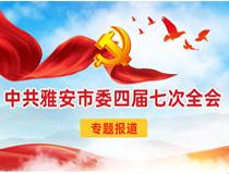 中共雅安市委四届七次全会