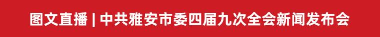 中共雅安市委新闻发布会——解读市委四届九次全会精神